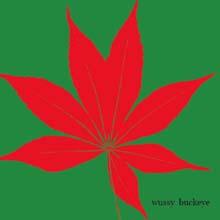 Buckeye – Wussy DAMNABLY018 | [CD] | £7.99